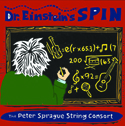 Dr. Einstein's Spin Category