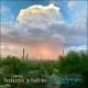 Download Rendezvous in Realtime Album